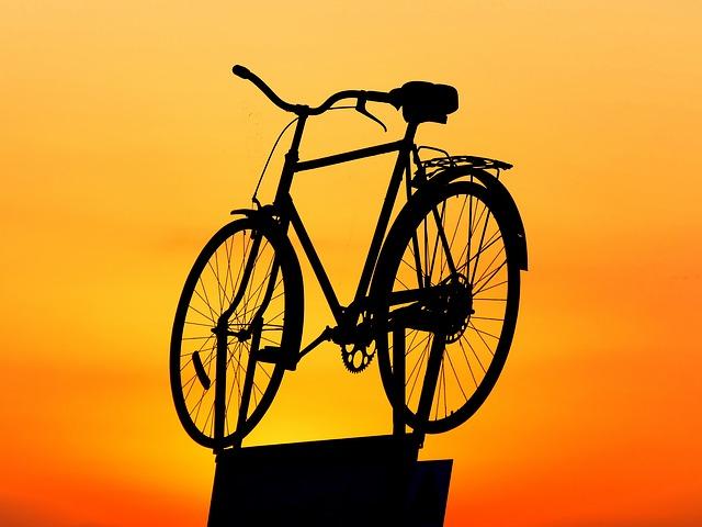 vystavené kolo
